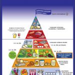 la pirámide alimenticia o alimentaria