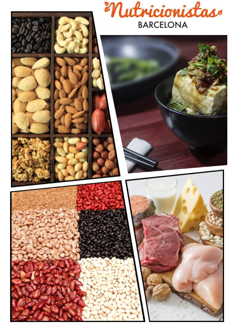 la importa de las proteinas en la dieta (2)